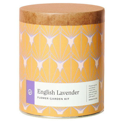 Modern Sprout Waxed Planter English Lavender
