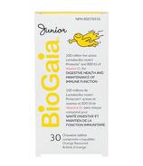BioGaia Junior Probiotic Tablets with Vitamin D