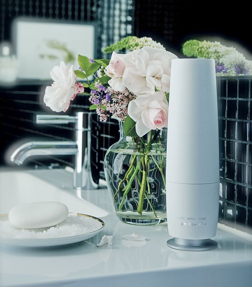 Buy Stadler Form Lea Aroma Diffuser In Silver At Well Ca