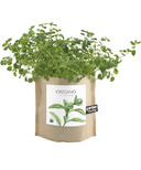 Potting Shed Creations Oregano Garden-in-a-Bag