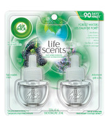 Air Wick Air Freshener Scented Oil Refills 2 Pack Forest Waters