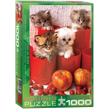Eurographics Kittens in Pots Puzzle