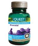 Quest Prenatal Multivitamin & Minerals