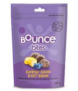 Bounce Blueberry Banana Bites