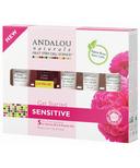 ANDALOU naturals 1000 Roses Get Started Skin Care Kit