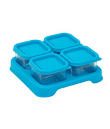 Green Sprouts Fresh Baby Food Glass Cubes Aqua