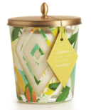 Illume Pineapple Cilantro Cameo Jar Candle
