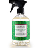 Caldrea Countertop Spray Daphne Feather Moss