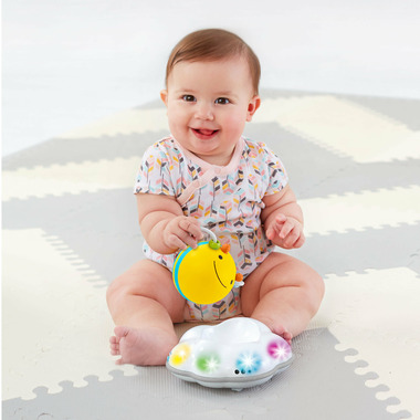 Skip Hop Explore and More Follow Bee Crawl Toy