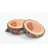 Robazzo Fern West Coasters