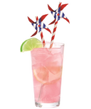 Kikkerland Pin Wheel Paper Straws