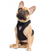 Canada Pooch Everything Harness Black Sizes XS-XL