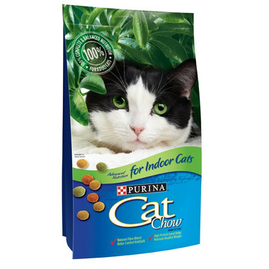 are cats allergic to chocolate