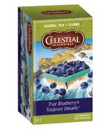 Celestial Seasonings True Blueberry