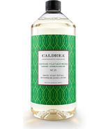 Caldrea Hand Soap Refill Daphne Feather Moss