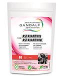 Gandalf Astaxanthin Capsules