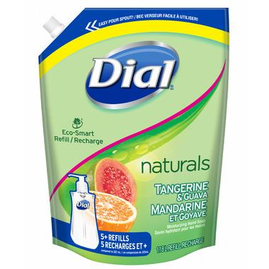 Dial Eco-Smart Hand Soap Refill