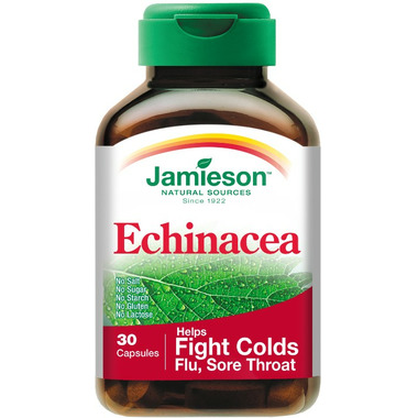 Jamieson Echinacea