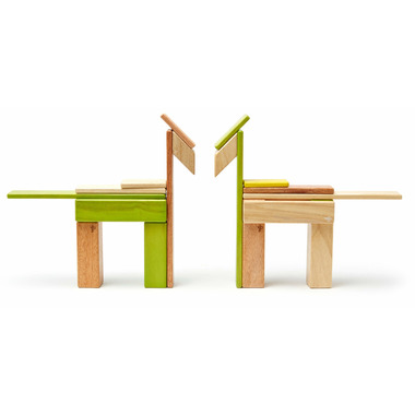 Tegu Magnetic Wooden Block Set Jungle