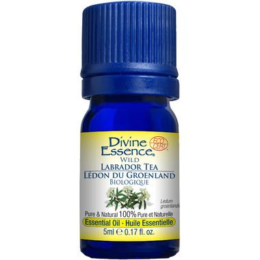 Divine Essence Wild Labrador Tea