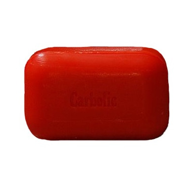 The Soap Works Carbolic Soap
