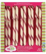TruJoy Organic Candy Canes