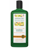 ANDALOU naturals Moisture Rich Shampoo Argan & Sweet Orange