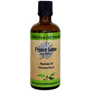 Penny Lane Organics Plantain Herbal Oil