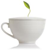 Tea Forte Cafe Cup