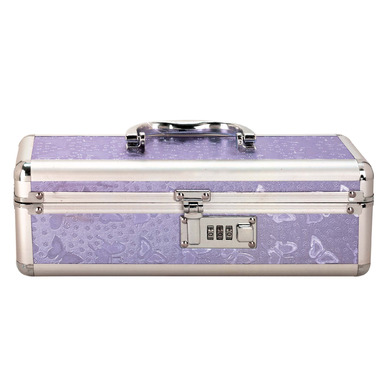 BMS Lockable Large Vibrator Case