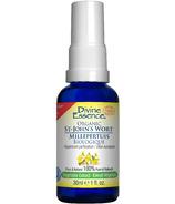 Divine Essence Organic St. John's Wort Oil