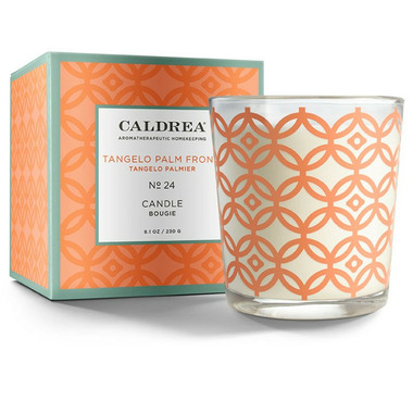 Caldrea Candle Tangelo Palm Frond