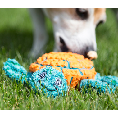 Hugglehounds Plush Durable Rubber Ruff-Tex Turtle Orange/Teal Dog Toy