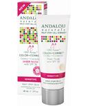 ANDALOU naturals 1000 Roses CC Cream Sheer Nude Tint