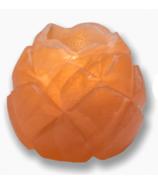 Heartfelt Living Lotus Flower Salt Tea Light Holder