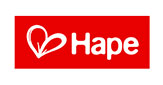 Buy Hape Toys at Well.ca
