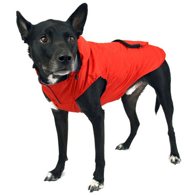 Canada Pooch Pacific Poncho in Yellow Sizes 10-20