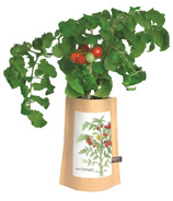 Potting Shed Creations Mini Tomato Tall Garden-in-a-Bag