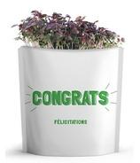 Gift-a-Green Congrats Pouch