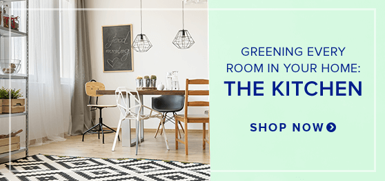 GREENING EVERY ROOM IN YOUR HOME: THE KITCHEN