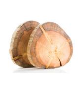 Woodrift and Co Tree Trivets