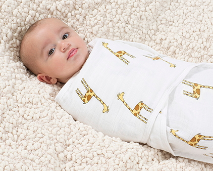 Buy Aden Anais Classic Easy Swaddle At Well Ca Free