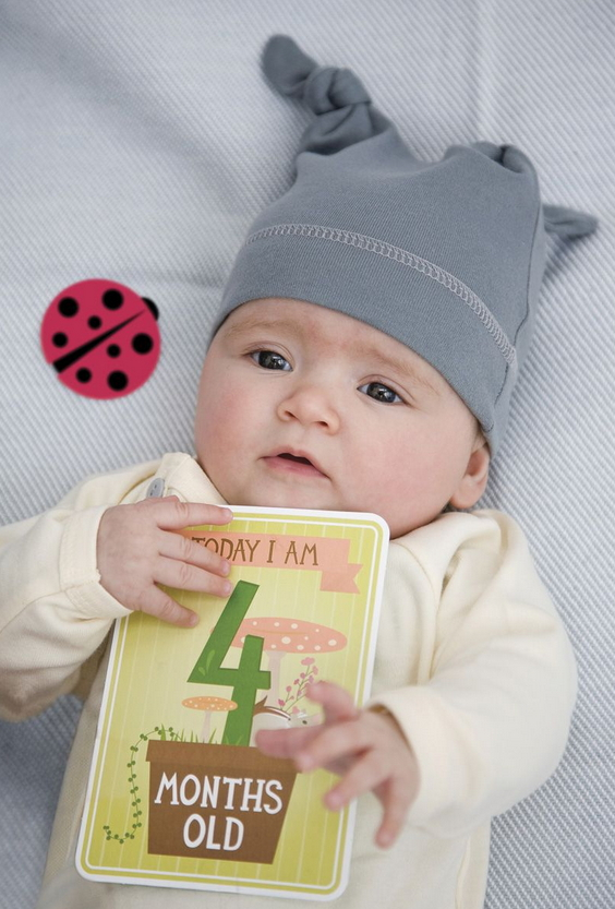Buy Milestone Baby Cards at Well.ca | Free Shipping $35 ...
