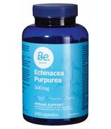 Be Better Echinacea Purpurea