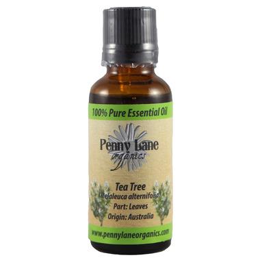 Penny Lane Organics Tea Tree Essential Oil