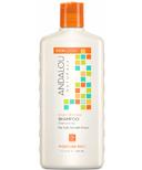 ANDALOU naturals Moisture Rich Shampoo Argan Oil & Shea
