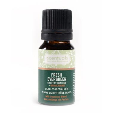 Scentuals Fresh Evergreen Essential Oil