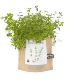 Potting Shed Creations Thyme Garden-in-a-Bag