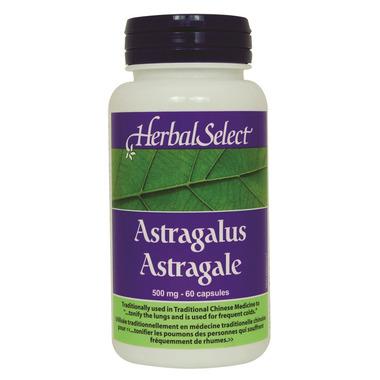 Herbal Select Astragalus Root