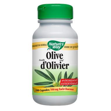 Nature\'s Way Olive Leaf